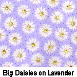 Big Daisies on Lavender