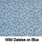 Wild Daisies on Blue